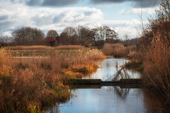 The Flierbeek streamlet in the Schammer (Dannis van der Heiden) Tags: leusden cane reed wood building grass nature park water tree schammer sky field cloud nikond750 d750 tamron70210mmf4 landscape farm