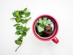 Fresh mint tea on white background (wuestenigel) Tags: peppermint frischeminze whitebackground pepperminttea pfefferminztee freshmint weiserhintergrund minztee minttea cup tasse herb leaf blatt noperson keineperson food lebensmittel mint als vegetable gemüse health gesundheit kraut basil basilikum cooking kochen healthy gesund ingredients zutaten spice würzen grow wachsen aromatic aromatisch flora isolate isolieren parsley petersilie desktop herbal kräuter nature natur