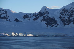 IMG_6872 (y.awanohara) Tags: cuvervilleisland cuverville antarctica antarcticpeninsula icebergs glaciers blue january2019