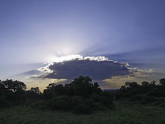 Cloud burst 01 (cujo1020) Tags: clouds africa oxbow gx85 lumix wideangle kenya masaimara green natur nature outdoors outside safari blue sky cloud sunburst
