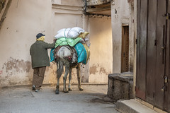_RJS6288 (rjsnyc2) Tags: 2019 africa city d850 fes fez medina morocco nikon outdoors photography remotesilver remoteyear richardsilver richardsilverphoto roadtrip streets travel travelphotographer