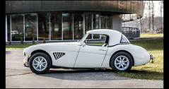 Austin Healey 100 BN4 (Laurent DUCHENE) Tags: godsavethecars auto automobile automobiles autodrome motorsport youngtimer linasmontlhéry car classiccar 2018 austin healey 100 bn4
