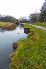 Canalside east of swing Bridge 24, nr  Disley  (Peak Forest Canal)   February 2019 (dave_attrill) Tags: bridge disley peakforest canal towpath peakdistrict nationalpark derbyshire cheshire february 2019 sepia cheshirering