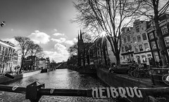 The city with a proper spring #2 (gorelin) Tags: sony sonyalpha alpha a7ii a7 amsterdam netherlands blackandwhite bw blackwhite black white skies sky clouds sun spring shameless shadows tree city street streetshooting streets streetphotography canal voigtlander super wide heliar superwideheliar 15mm wideangle building church bird heibrug monochrome bicycle ilce7m2 sonlyilce7m2 water