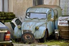 DSC_4286 (azu250) Tags: oldtimerbeurs reims 32 salon champnois belles champenoises 32eme 2019 voitures collection oldtimer car citroen ak350 1964