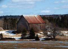 0008979 (To all that visit, Thank you) Tags: barn rust roof field snow winter trees sky blue clouds nbphoto nb canada ©allrightsreserved