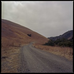 Ranch road September (ADMurr) Tags: california ranch road overcast mf 6x6 kodak film hasselblad dad832 500cm 80mm zeiss planar