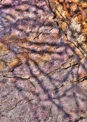 graffiti (she, myself and eye) Tags: eechillington nikond7500 viewnxi corelpaintshoppro mountolympus hiking abstract impressionistic shadow shapes utah rocks explored
