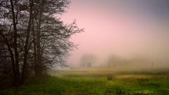 Die Rheinebene bei Baden-Baden (MHikeBike) Tags: wald berge wasser bäume nationalpark schwarzwald nordschwarzwald murg murgtal baiersbronn huzenbach schönmünzach wandern wege ruhe berg winter eberstein rheinebene badenbaden
