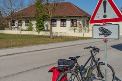 2019 Bike 180: Day 48, March 31 (suzanne~) Tags: 2019bike180 bike bicycle bavaria germany toad frog crossing road sign trafficsign