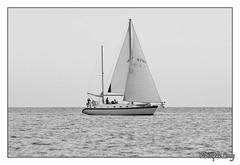 Photo de 2008. (christophe.leroy19) Tags: noiretblanc noirblanc nb blackandwhite blackwhite bw voilier mer sea bateau