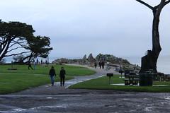 IMG_9761 (mudsharkalex) Tags: california pacificgrove pacificgroveca loverspointpark