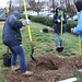 Ayrsley_Tree_Planting_2019_ (54)