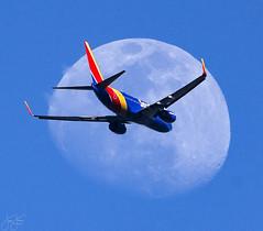 Moon Landing (Jersey JJ) Tags: moon landing moonlanding shot southwest airlines boeing 737 n7287a