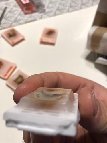 Underprocessed tissue