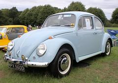 NPX 560D (3) (Nivek.Old.Gold) Tags: 1966 volkswagen beetle 1500
