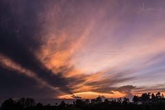 Rayos y Colores en el Cielo (Juliancs) Tags: sunset atardecer atardeceres palmadecera palmas palm paisaje landscape sunlight clouds colors colombia quindio salento valley valledecocora