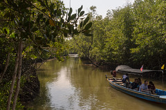 Pran Buri mangrove (sillie_R) Tags: boat mangrove nationalpark pranburi pranburimangrove river thailand prachuapkhirikhan th