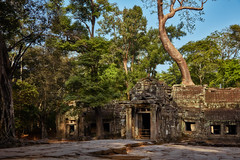 Ta Prohm – Gatehouse (Thomas Mülchi) Tags: angkor siemreap cambodia 2018 siemreapprovince taprohm gate jungle trees forest gatehouse gopuram architecture krongsiemreap kh