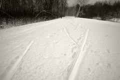 Jüri terviserada (Jaan Keinaste) Tags: pentax k3 pentaxk3 eesti estonia loodus nature jüriterviserada lumi snow talv winter suusajälg
