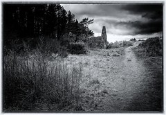 The Millie Bothy (Tom McPherson) Tags: sunset beach water sky red flower nature blue night white tree green flowers portrait art light snow dog sun clouds thunder storm moray scotland elgin burghead hopeman landscape seascape blackandwhite mono monochrome explore photography macro nikon fuji prime artistic fishing village structure architecture historic ancient scottish beautiful girl woman picture lens stack mountains wild natural cat rain forest path woodland stia acros simulation film photographer outside design pier countryside interior bothy ruin millies woods roseisle