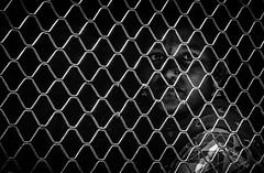 Mumbai (VI) (manuela.martin) Tags: bw blackandwhite schwarzundweis streetphotography india mumbai people peoplephotography foreignpeople hasselblad x1d hasselbladx1d mediumformat