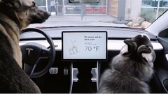 FOX NEWS: Tesla's latest features are for criminals and dogs (siddiquishadab888) Tags: geek world high tech news