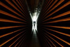 Enter the Matrix...