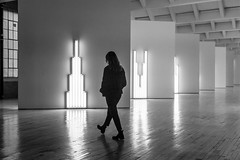 Neon (John St John Photography) Tags: diabeacon streetphotography candid danflavin youngwoman silhouette neon tubes lights art museum beacon newyork reflections nabisco panels bw blackandwhite blackwhite blackwhitephotos johnstjohnphotography