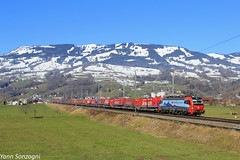 And the Winner is... (Lion de Belfort) Tags: train chemin de fer montagne alpes alps suisse schwytz steinen neige winner spedition re 193 vectron 469 simplon cff ffs sbb cargo international siemens gotthard gothard bahn