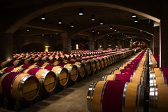 Looking over the barrels II (mgschiavon) Tags: wine colors patterns madebyhumans indoors california