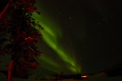 March Madness-113 (juan_guthrie) Tags: northernlights yellowknife nwt aurora