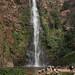 Wli Falls