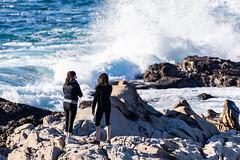Point Lobos, December 2018 #1 (satoshikom) Tags: canoneos6dmarkii pointlobosstatenaturalreserve carmelbythesea carmel californiastateparks californiacoast canonef100400mmf4556lisiiusm