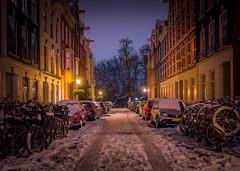 Snowy day in Amsterdam (TeunJanssen) Tags: amsterdam oudwest vondelpark street ambient dutch holland netherlands nederland capital olympus omd omdem10 travel backpacking