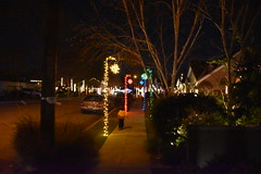 DSC_4873 (earthdog) Tags: 2018 needstags needstitle nikon nikond5600 d5600 18300mmf3563 christmas decoration light christmaslight sanjose willowglen