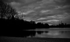 Lake View (rwbthatisme) Tags: nec birmingham fuji film 100f monochrome