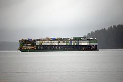 AML Road n Train Barge 333 (Gillfoto) Tags: aml alaskamarinelines cargo barge tug southeastalaska alaskapanhandle raincountry insidepassage freight trailers tractortrailer freighttraincargo wagons rail