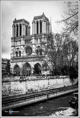 31122018-DSC_6469 (Nature Art Photographie) Tags: notredamedeparis pont seine péniche quai