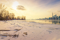 Sunny Day on Ward's Island (A Great Capture) Tags: lakeontario lake cntower toronto sunset skyline snow agreatcapture agc wwwagreatcapturecom adjm ash2276 ashleylduffus ald mobilejay jamesmitchell on ontario canada canadian photographer northamerica torontoexplore winter l'hiver 2019 torontoislands centreisland island wardsisland canon eos 6d mark ii ef2470mm 2470mm landscape paisaje paysage landschaft colours colors colourful colorful light sun sunny sunshine sunlight gold golden digital dslr lens urbannature scenery scenic sky himmel ciel waterscape wet water agua eau outdoors vibrant cheerful vivid bright clouds cloudy