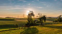 Abendstimmung (Rainer Sassenburg) Tags: abendhimmel abendstimmung landschaft rauwiesenhof sonnenuntergang wiese