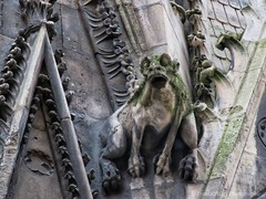 Paris - December 2018 (freaksandgigspics) Tags: paris pariscartepostale postcardparis cathedrale notredamedeparis gargouilles gargoyles friends homecoming parisbourgeois tourisme parisboujee touristshit hometown cathedral school banlieue hautsdeseine surburbs régionparisienne france frenchgirls