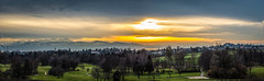 Lindau Sunset (colin@thecranes.co.za) Tags: germany goldenhour lakeconstance sunset forest