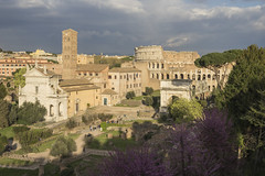 DSC07277 (Triin Olvet) Tags: fororomano itaalia palatino rome rooma