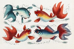 Chinese painting featuring two gold and two silver fish (ca.1800–1899) from the Miriam and Ira D. Wallach Division of Art, Prints and Photographs: Art & Architecture Collection. Original from the New York Public Library. Digitally enhanced by rawpixel. (Free Public Domain Illustrations by rawpixel) Tags: ancient animal antique art artwork beautiful chinese colorful decor decoration decorative drawing fineart fish gold historic historical history illustration lovely old painting retro silver swim swimming tradition traditional vintage watercolor