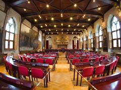 Gothic room in Leuven Town Hall (Fernando Álvarez Rodríguez) Tags: olympusomd photowalk phototravel photohistory streetphotography leuven belgium
