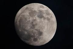IMG_0893 (nerinucci) Tags: moon luna nightpic nightphoto moonlight highexposure