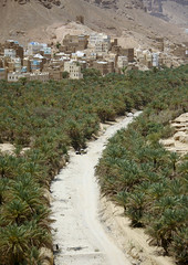 Prospect Of Wadi Doan Covered By Palm Trees And Buildings, Hadramaut, Yemen (Eric Lafforgue) Tags: agricultural agriculture agroeconomy arabia arabiafelix arabianpeninsula beautyinnature building car city colourpicture community day hadhramaut hadhramawt hadhramout hadramaout hadramawt jeep landscape majestic mountain nature nopeople outdoors palmtree placeofinterest rock rockformation sun traveldestinations unrecognizableperson vanishingpoint vertical wadidawan wadidoan yemen mg5754