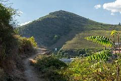 Douro32 (Evajavel) Tags: douro valle
