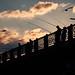 Pescadores en Puente Galata